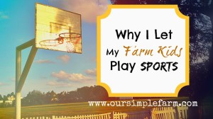 Why I Let My Farm Kids Play Sports