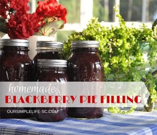 blackberry pie filling recipe