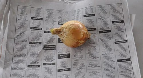wrap onions in newspaper