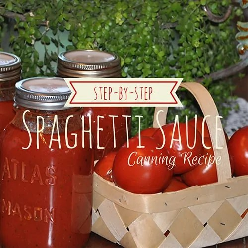 Spaghetti Sauce Canning Recipe