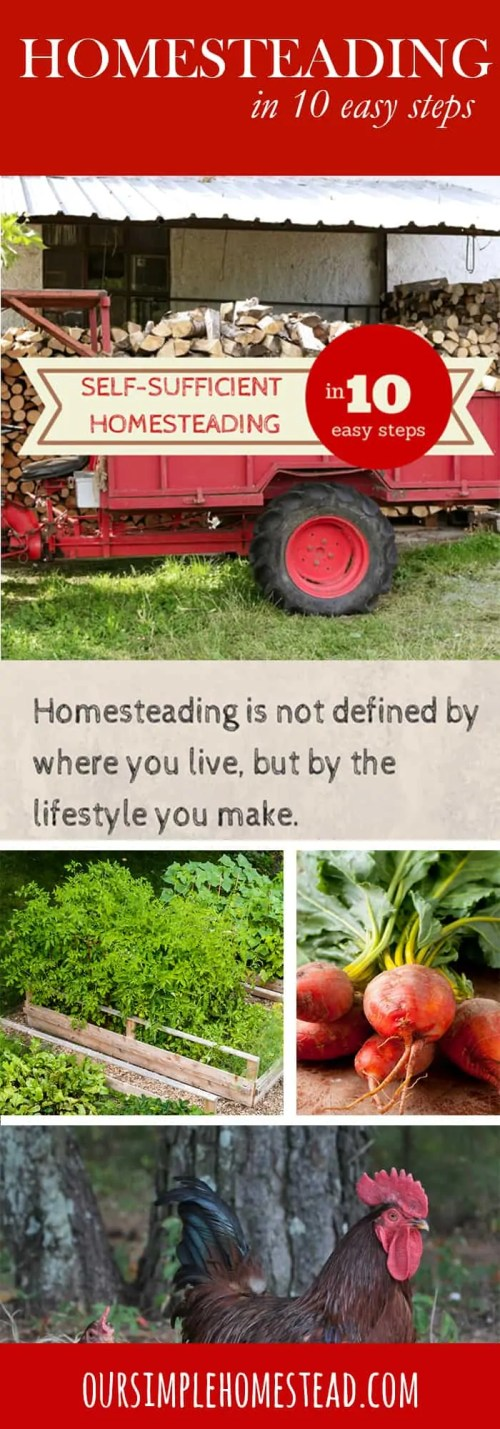 self sufficient homesteading