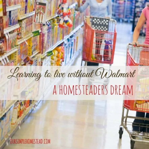 Learning to Live without Walmart - A Homesteaders Dream