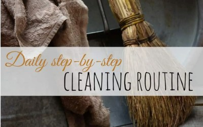 Daily Cleaning Schedule – Step-by-Step