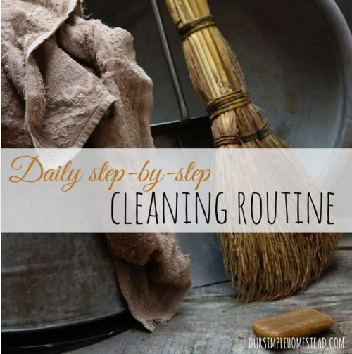 Daily Step-by-Step Cleaning Routine