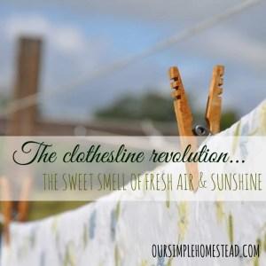 The Clothesline Revolution
