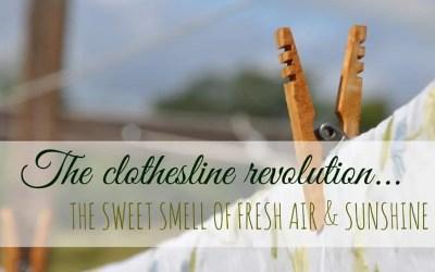 Clothesline Revolution