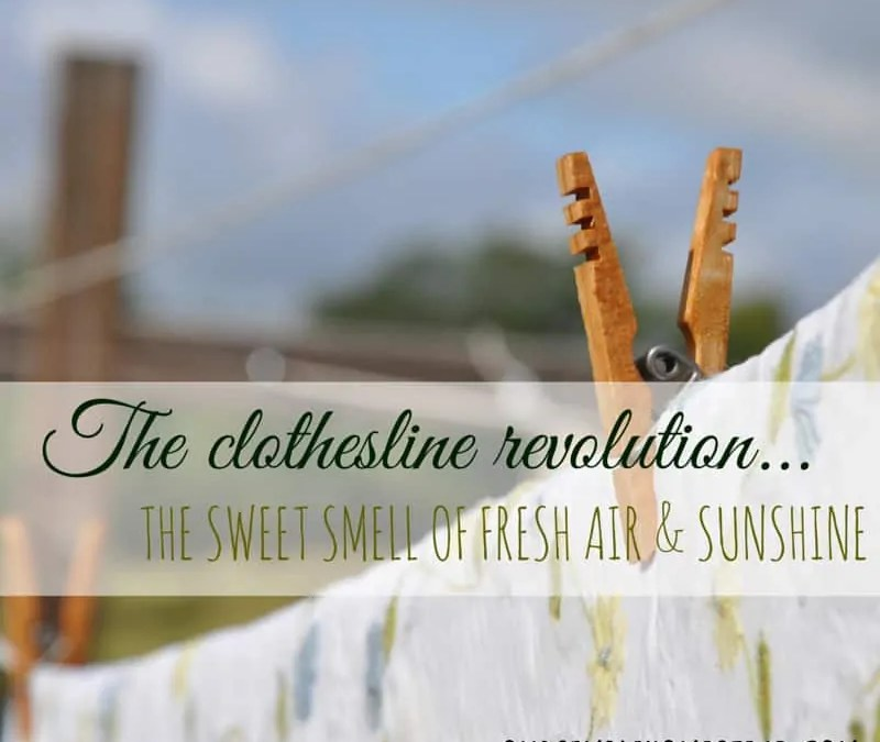 The Clothesline Revolution