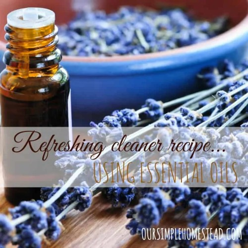 Cleaning Recipe