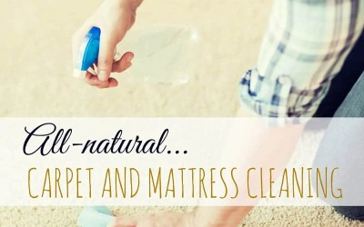 Natural Carpet and Mattress Cleaning