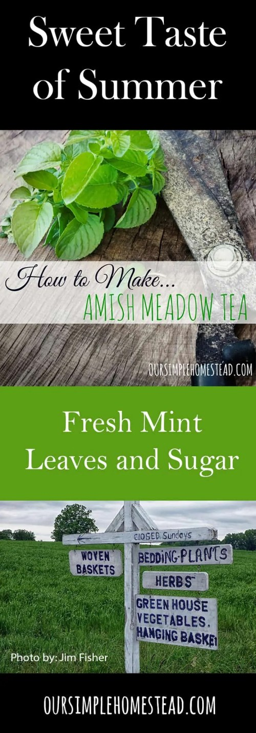 How to Make Meadow Tea
