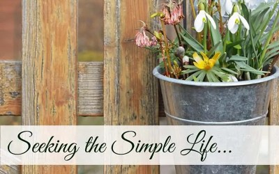 Seeking the Simple Life