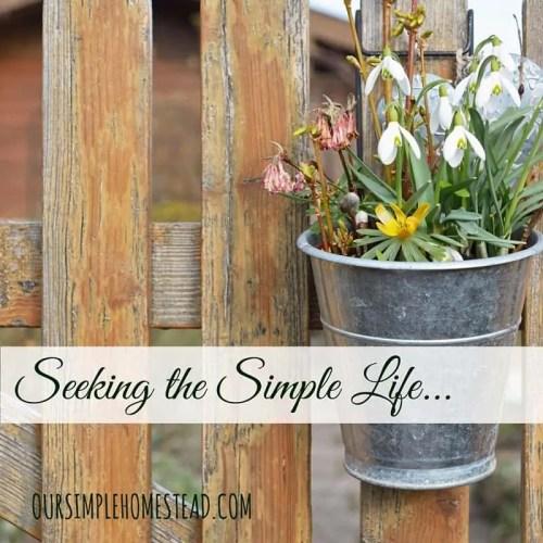seeking simple