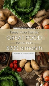Feed your family for $200 a month.