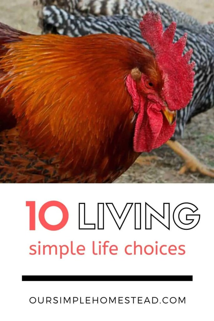 10 Living a Simple Life Choices