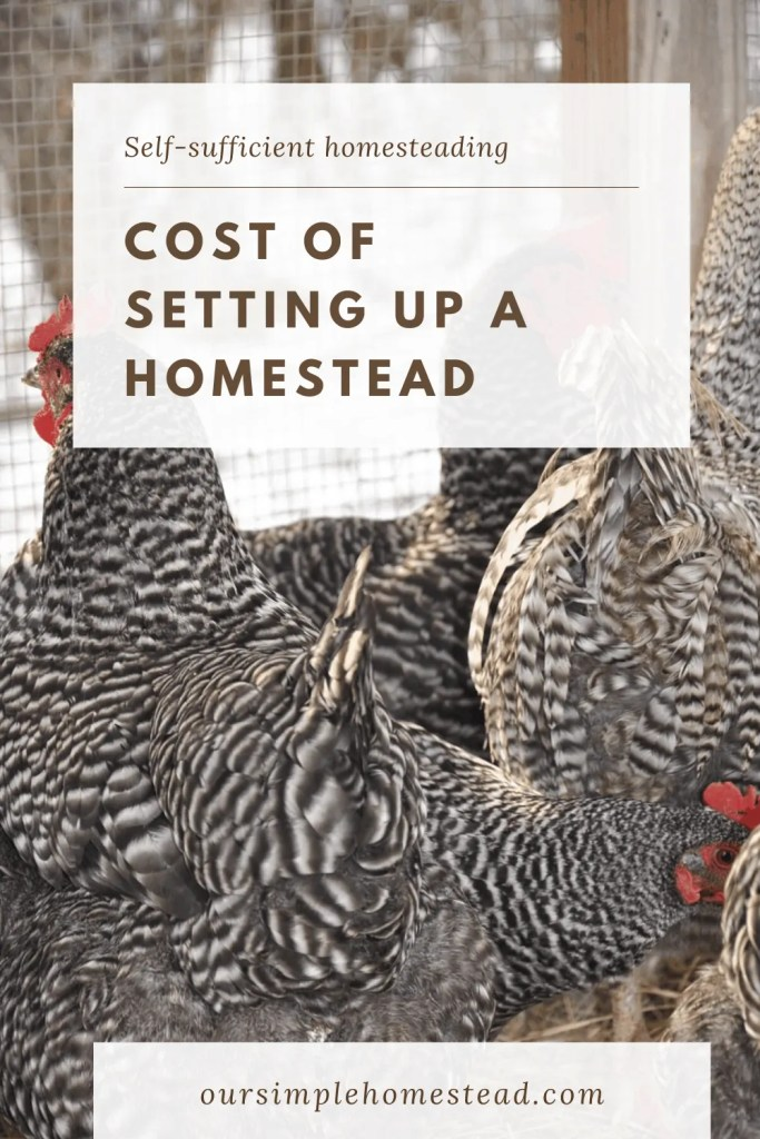 the true cost of homesteading
