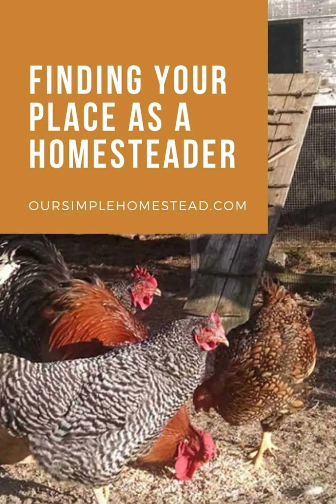 finding yourself as a homesteader