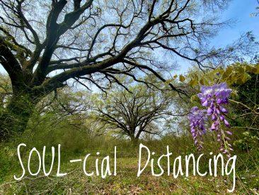Soul-cial Distancing