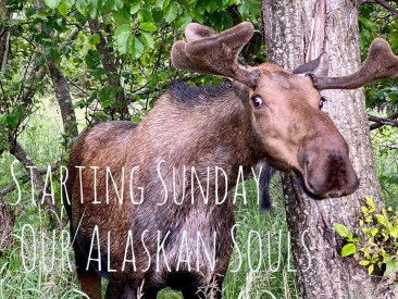 Our Alaskan Souls starts Sunday