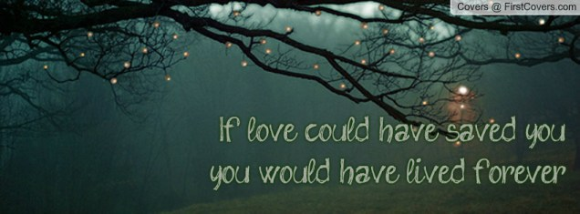 if_love_could_have-84977