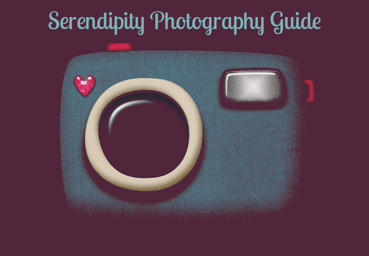 Serendipity Photography Guide