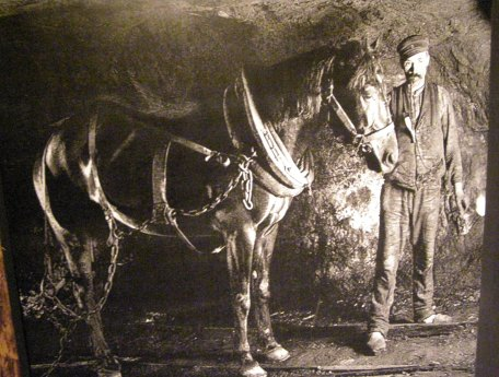 photograph of miner and horse