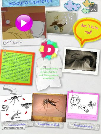 http://arnedillo.edu.glogster.com/mosquito-6737/