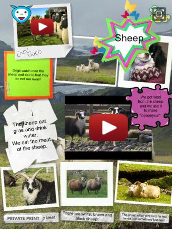 http://annasow.edu.glogster.com/sheep