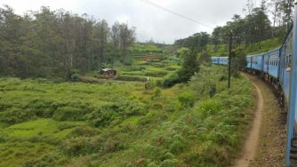 Nuwara Eliya - Our Travel Experience
