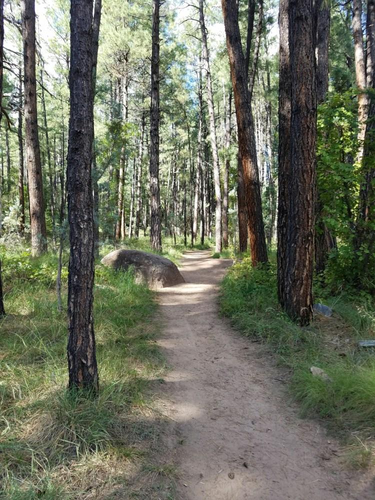 Horton Creek Trail