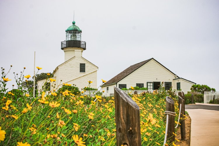 Spring Flowers at Old Point Loma Lighthouse