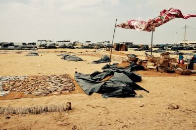 drying of fish on the beach side