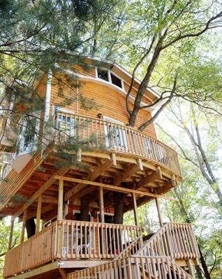 us_weird_treehouse