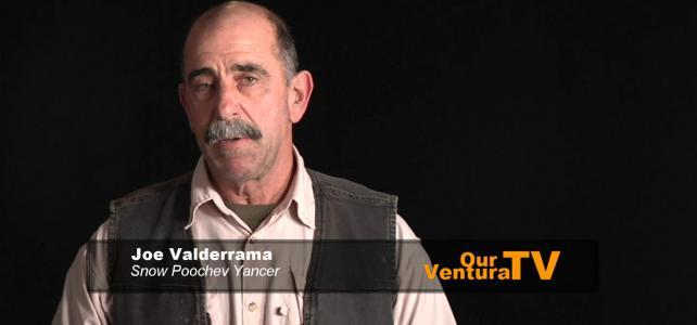 Joe Valderrama