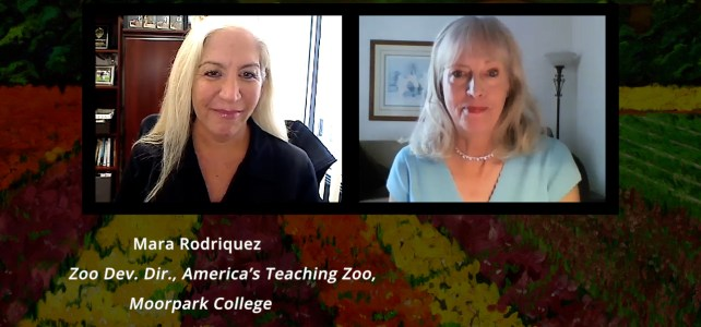 Mara Rodriguez at America's Teaching Zoo