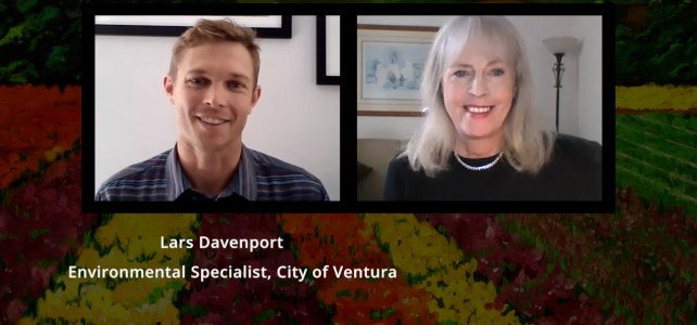 Lars Davenport, Ventura Styrofoam Ban