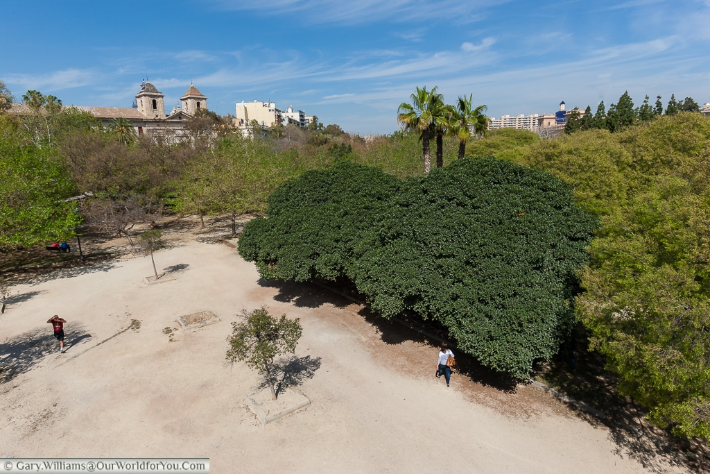 Looking down on the Jardin del Turia from the Pont del Real, Valencia, Spain