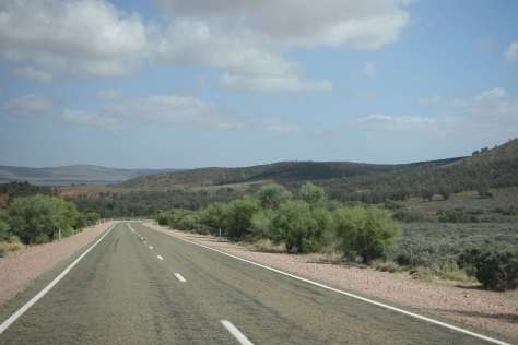Wilpena roadtrip