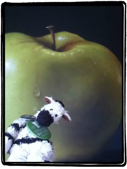 ZeBot's Big Apple
