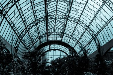 Inside the greenhouse, The Wintergarden, Auckland Domain