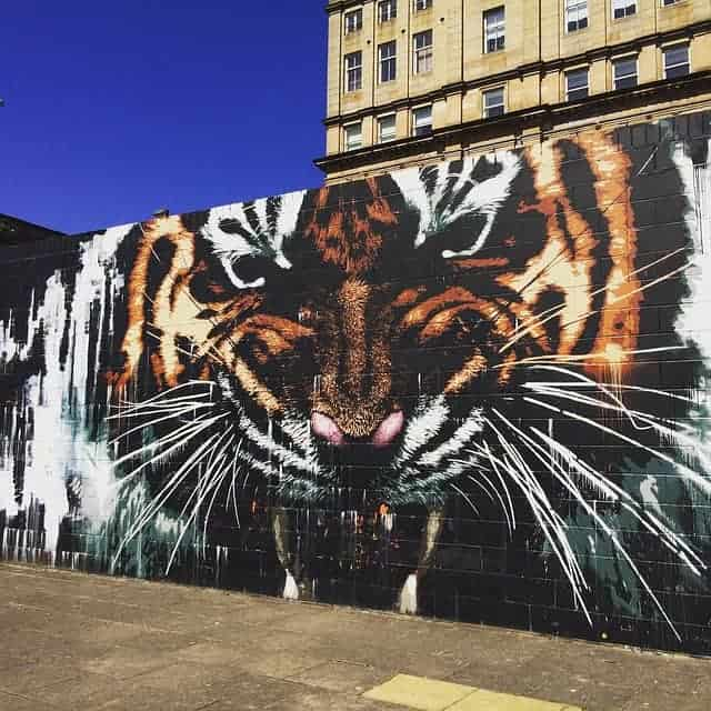Glasgow Mural Tiger