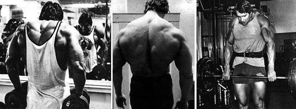 Arnold Doing Shrugs