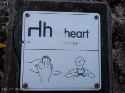 H for heart (800x600)