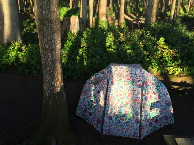 My garish tent at Cape Lookout State Park