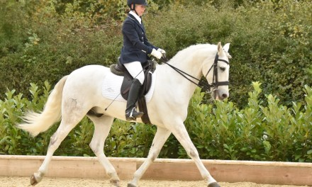 Carolyn Butler's love affair with Lusitanos