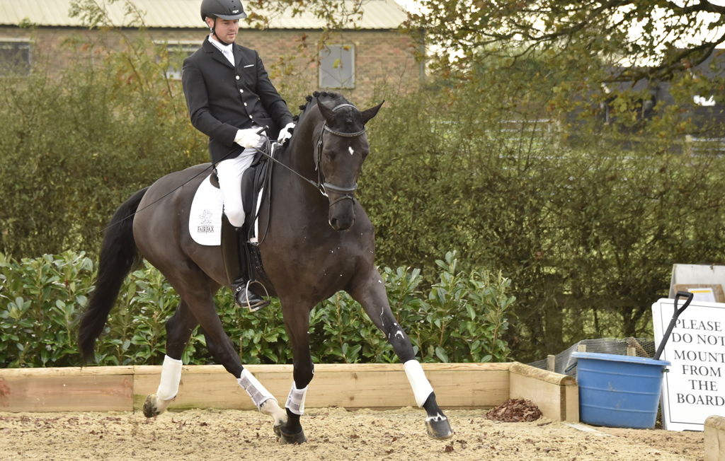 Daniel Timson: the quiet man in the saddle
