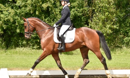 Dressage results: Hickstead, West Sussex 21 June 2016