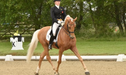 Dressage results: Hickstead, West Sussex 22 June 2016