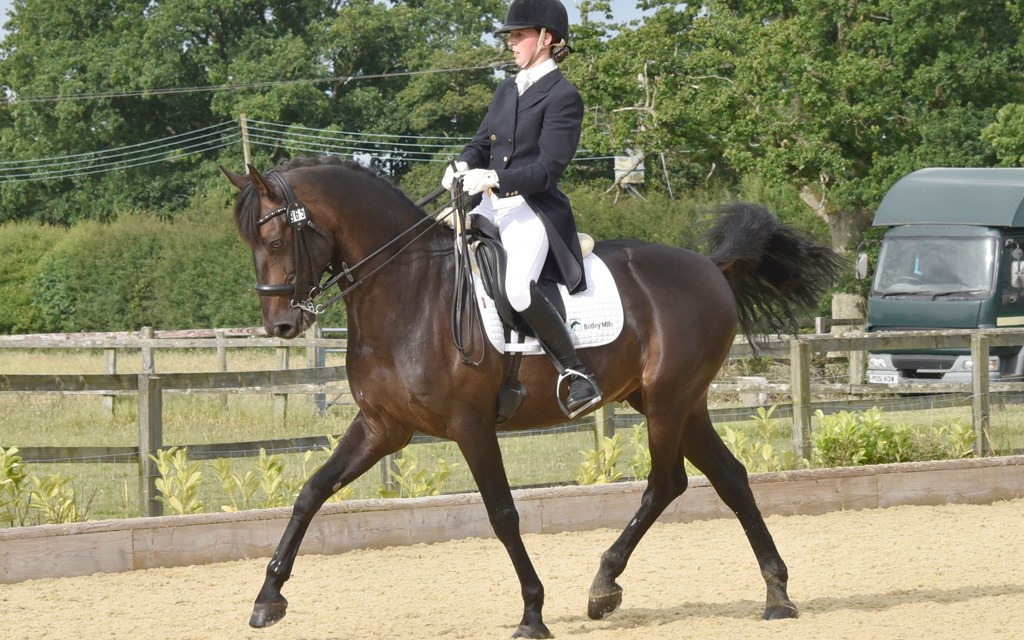 Julia Walker showcases Bibi's 'Oldenburgo' x Lusitano talent