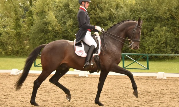 The big step up to Big Tour starts here