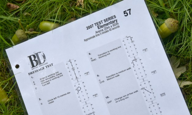 Elementary 57: at test of engagement and self-carriage